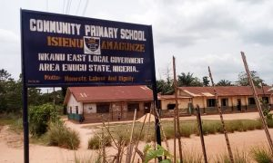 Isienu Amagunze Community Primary School